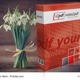 Produktbox mit Blumen