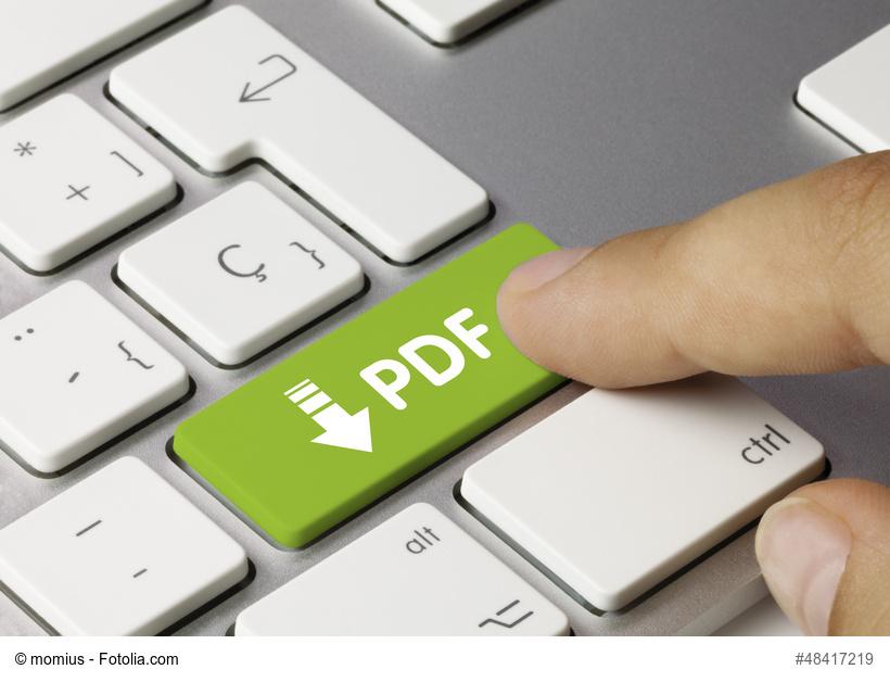 PDF Button Grün auf Tastatur